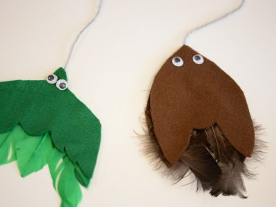 Green and brown feathers